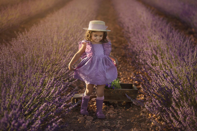 campo-lavanda-fotografo-toledo-fotografia-creativa-niños-bebes